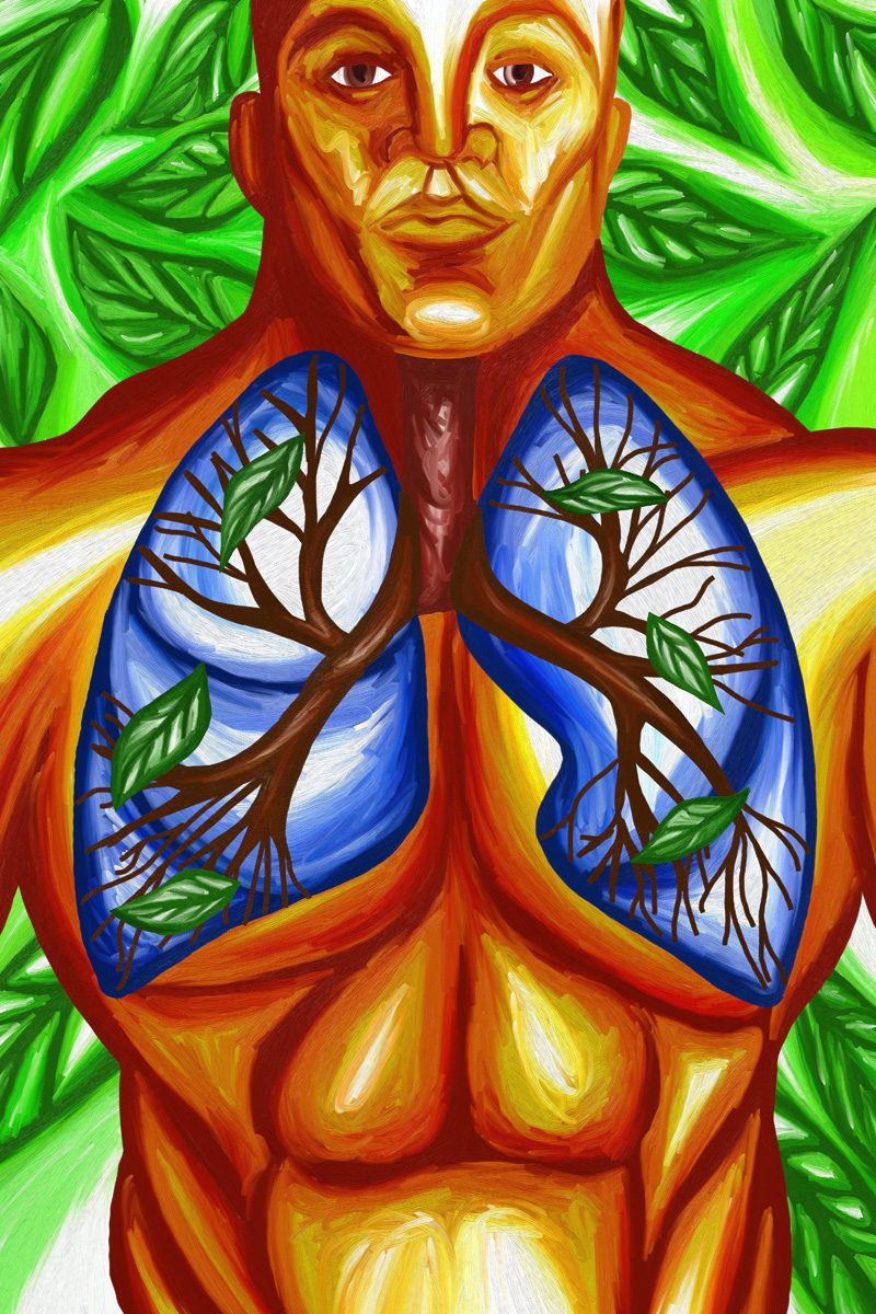 The image shows a piece of artwork by Jina Wallwork. It is a digital painting of a man with lungs created from trees. Stylistically this piece of artwork has links with surrealism.