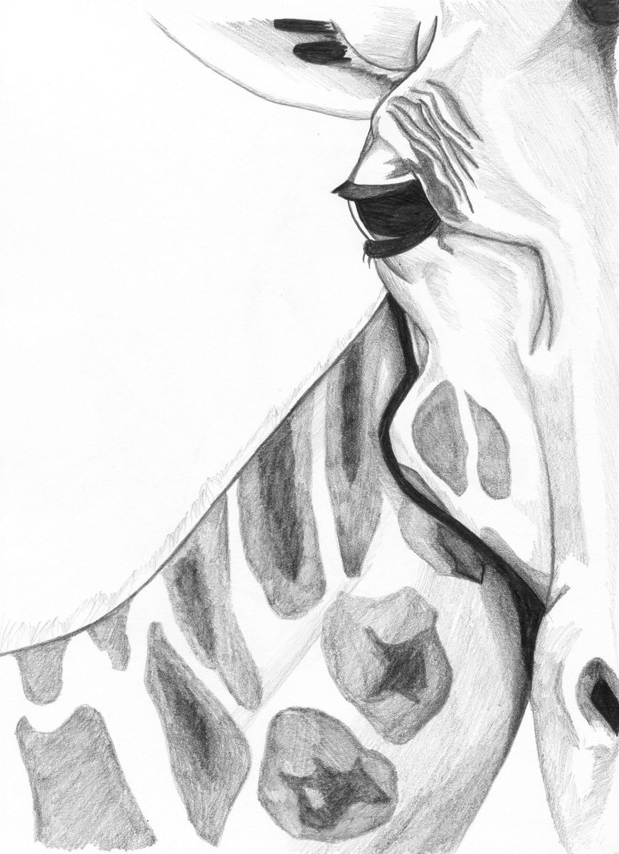 The image shows a piece of artwork by Jina Wallwork. It is a drawing of a giraffe. Stylistically this piece of artwork has links with realism.